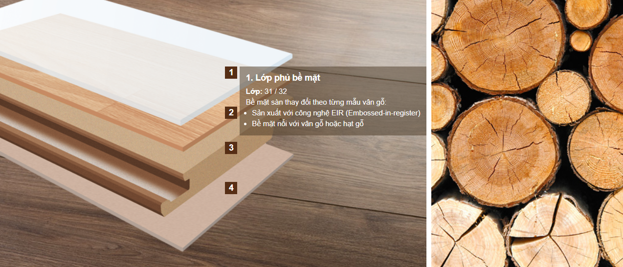 Cấu trúc sàn gỗ Đức Hornitex